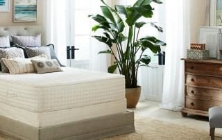 Botanical Bliss Mattress reviews